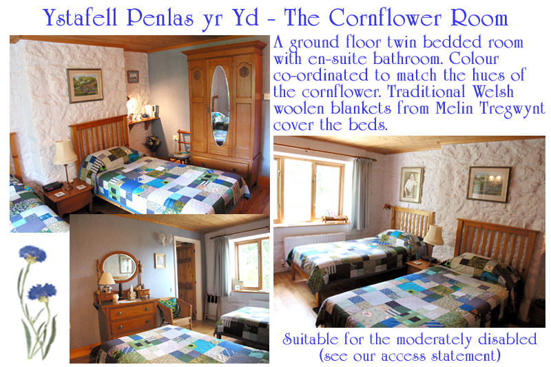 Bed and Breakfast Cornflower Bedroom